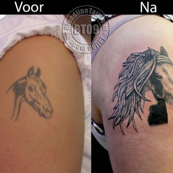 cover horse by Bram@bloodlineTattoo.nl